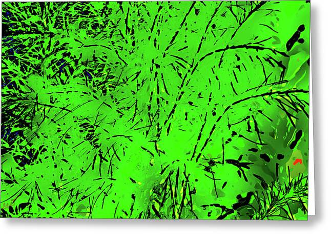 Abstract Dog Fennel Greeting Card