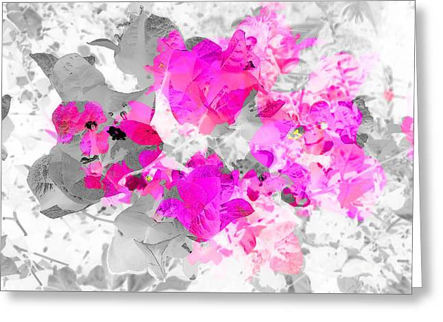 Abstract Floral No.4 Greeting Card