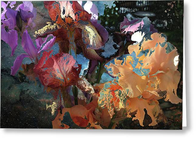 Abstract Flowers Of Light Series #15 Greeting Card
