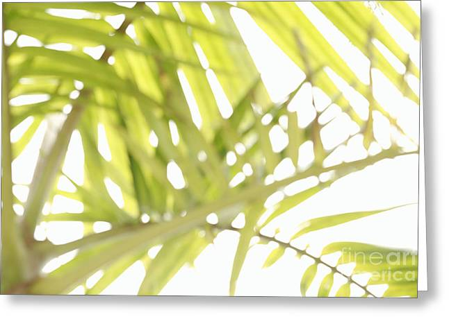 Abstract Foliage Greeting Card by Gaspar Avila