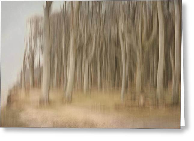 Abstract Ghost Forest Greeting Card