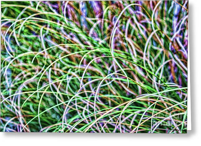 Abstract Grass Greeting Card