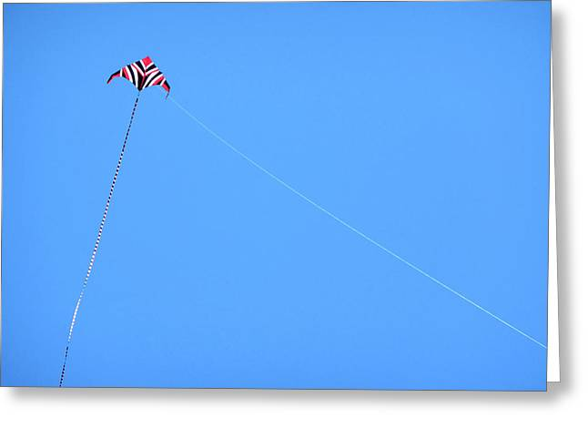 Abstract Kite Flying Greeting Card