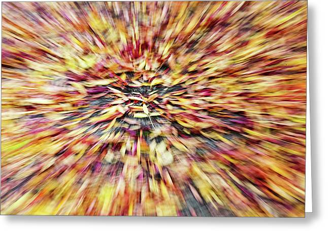 Greeting Card featuring the photograph Abstract Leaves 1 by Rebecca Cozart