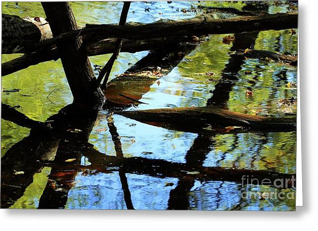 Abstract Of St Croix River 03 Greeting Card