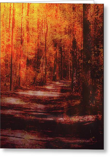 Abstract Path Greeting Card