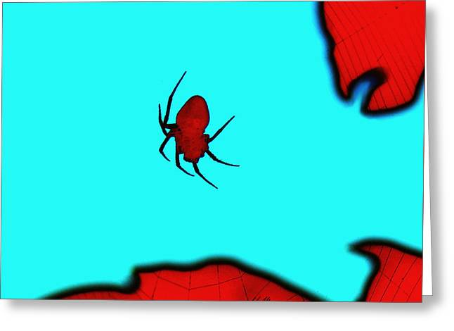 Abstract Spider Greeting Card