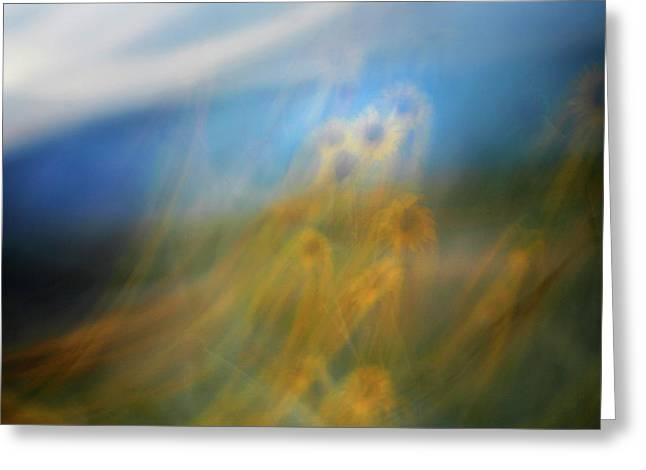 Greeting Card featuring the photograph Abstract Sunflowers by Marilyn Hunt