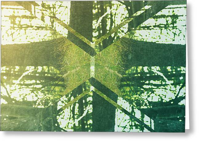 Abstract Trees Greeting Card by Thubakabra