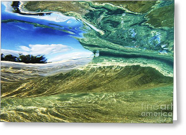 Abstract Underwater 1 Greeting Card by Vince Cavataio - Printscapes