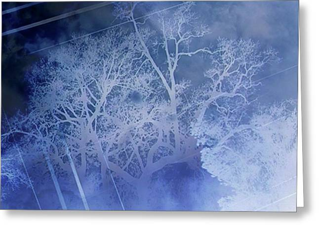 Abstract With Creepy Tree- Ghost Story Greeting Card by Kristin Sharpe