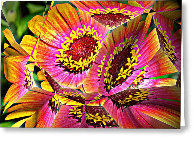 Abstract Yellow Flame Zinnia Greeting Card