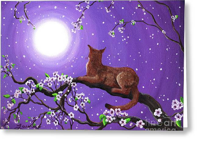 Abyssinian In Amethyst Moonlight Greeting Card by Laura Iverson
