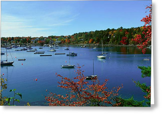 Acadia National Park In Autumn, Maine Greeting Card by Panoramic Images