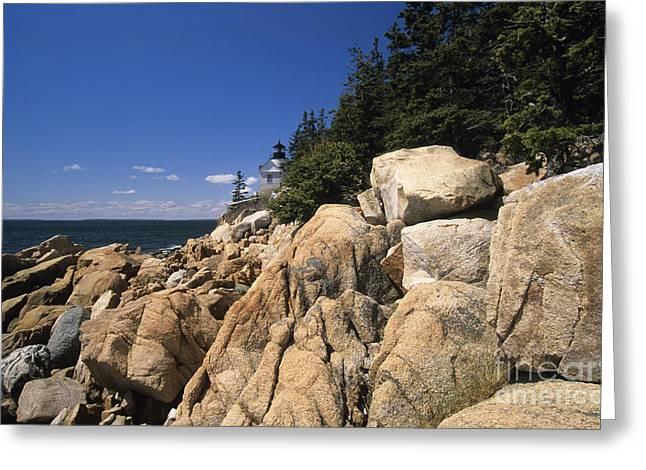 Acadia National Park Maine - Bass Harbor Head Lighthouse Greeting Card by Erin Paul Donovan