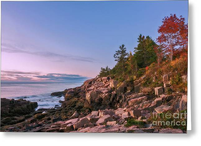 Greeting Card featuring the photograph Acadia by Sharon Seaward
