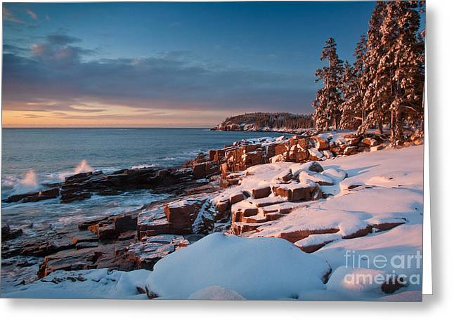 Wild And Scenic Greeting Cards - Acadian Winter Greeting Card by Susan Cole Kelly