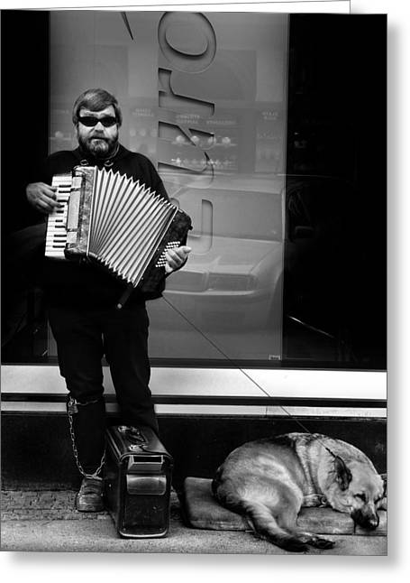 Accordian Player Greeting Card by Todd Fox