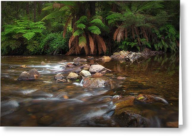 Greeting Card featuring the photograph Acheron River by Tim Nichols