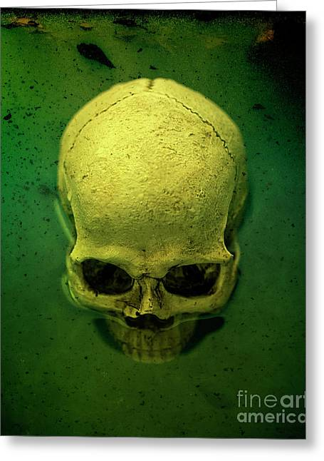 Acid Pool Skull Greeting Card