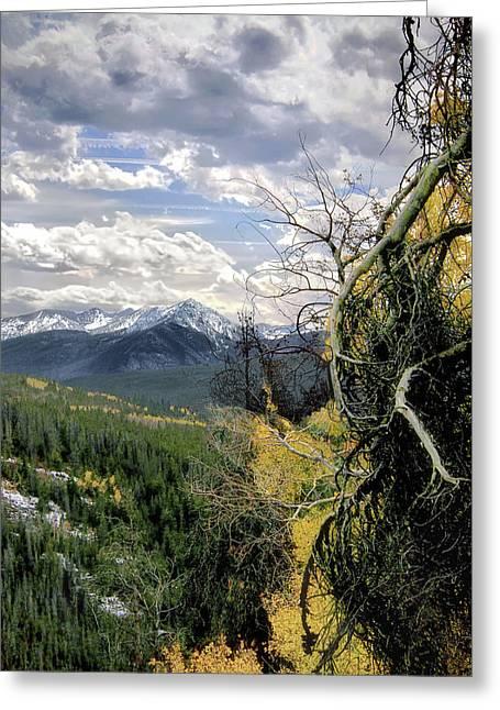 Acorn Creek Trail Greeting Card