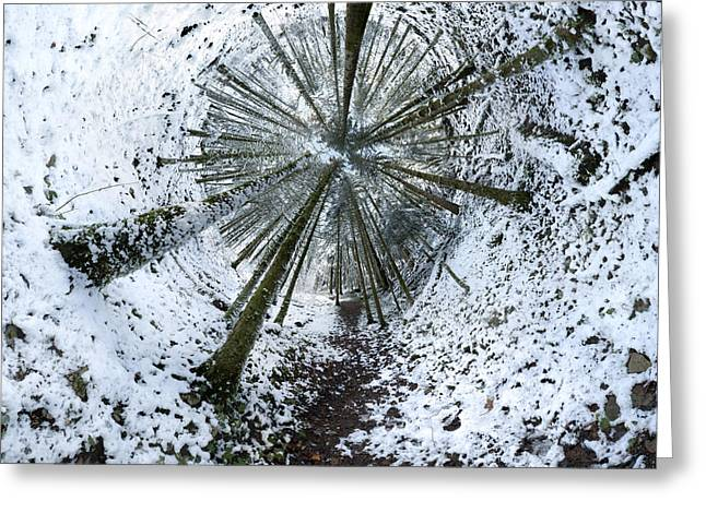 Across Snowy Forest 2 Greeting Card by Patrick Jacquet