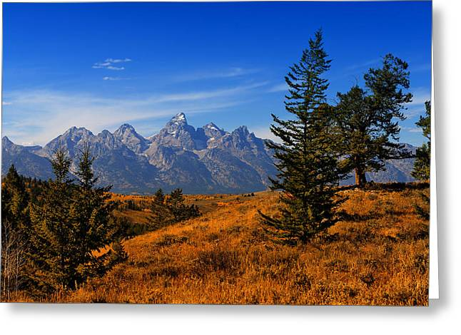 Across Teton Valley Greeting Card by Greg Norrell