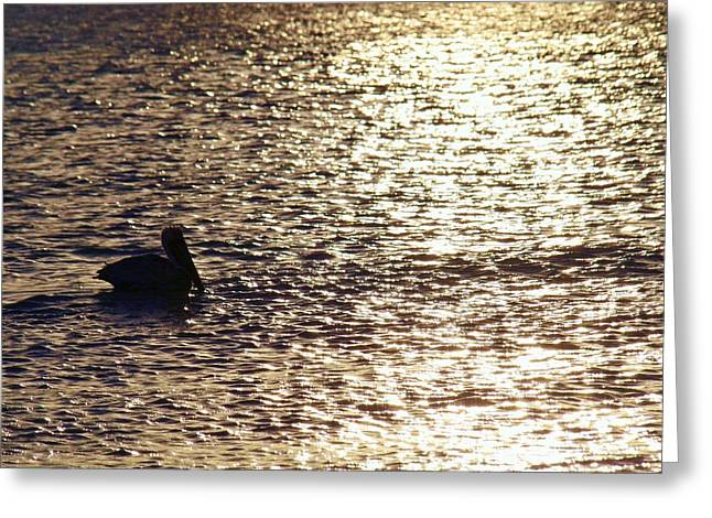 Across The Amber Glow Greeting Card