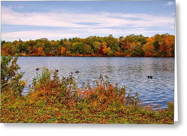 Across The Lake - Lake Carasaljo Greeting Card by Angie Tirado