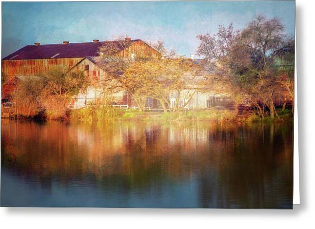Across The Marina Greeting Card by Terry Davis