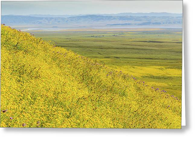 Greeting Card featuring the photograph Across The Plain by Marc Crumpler