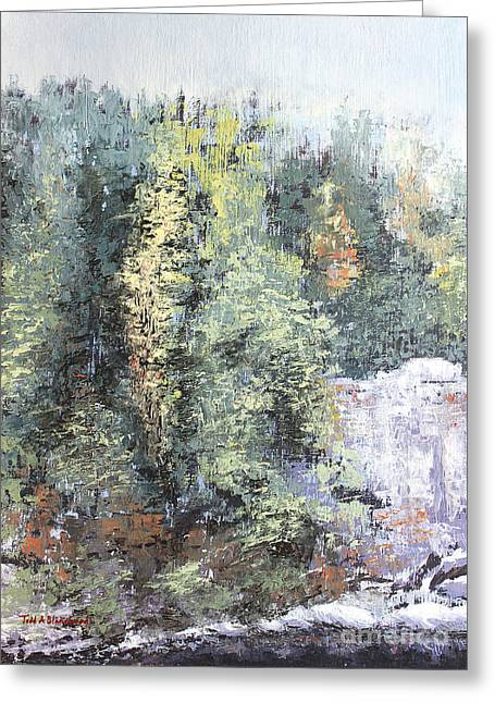 Across The Ravine Greeting Card by Todd A Blanchard