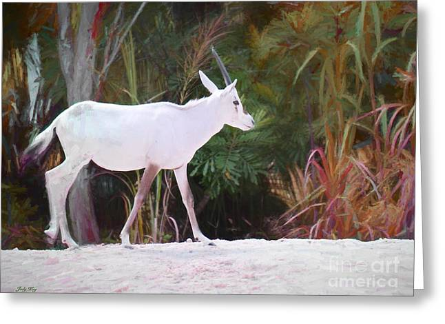 Addax On The Move Greeting Card