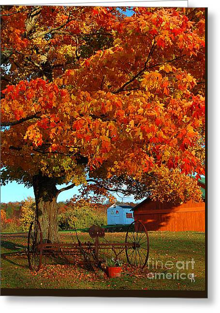 Adirondack Autumn Color Greeting Card by Diane E Berry