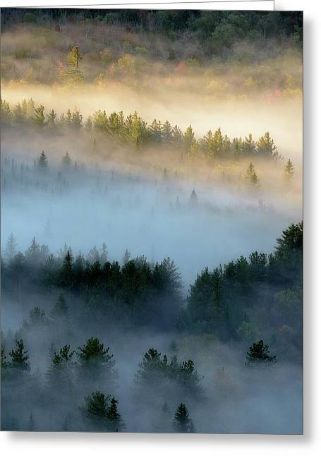 Adirondack Fog Greeting Card