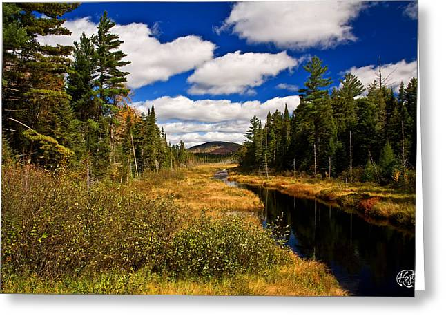 Adirondacks Greeting Card by Brad Hoyt