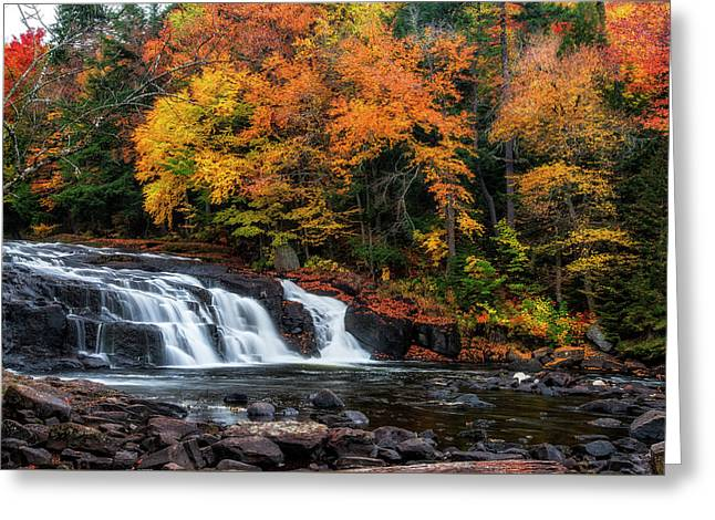 Adirondacks Waterfall Greeting Card by Mark Papke