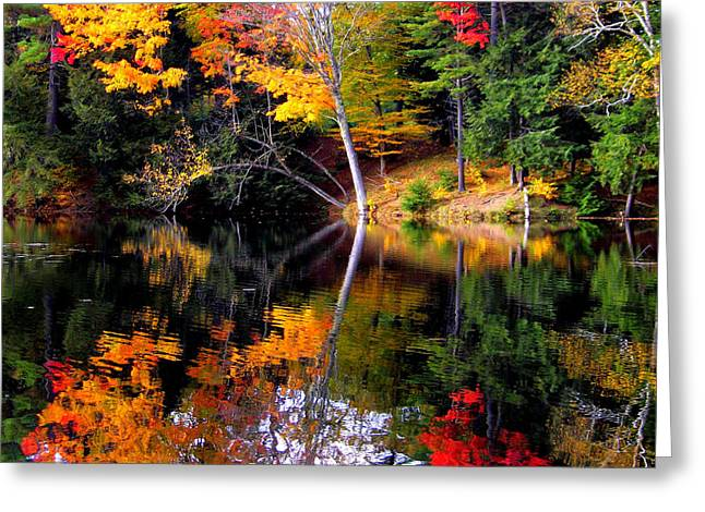 Adk Reflections Greeting Card by Jennifer St Pierre