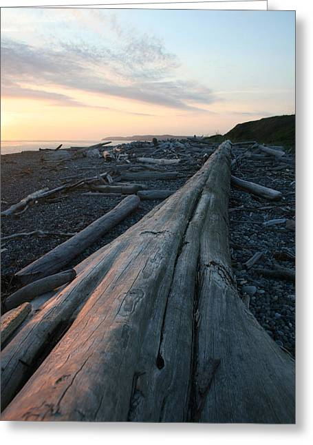 Admiralty Log Full Color Greeting Card