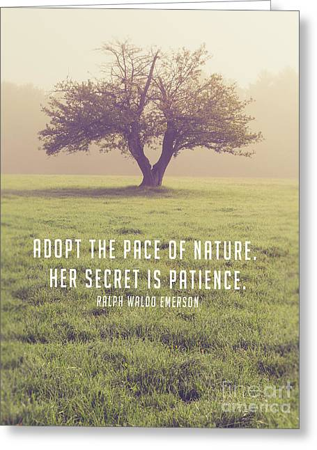 Adopt The Pace Of Nature. Her Secret Is Patience. Greeting Card