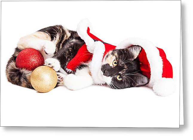 Adorable Christmas Calico Santa Kitty Greeting Card by Susan Schmitz