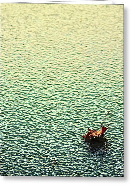 Adrift In A Sea Of Ennui Greeting Card
