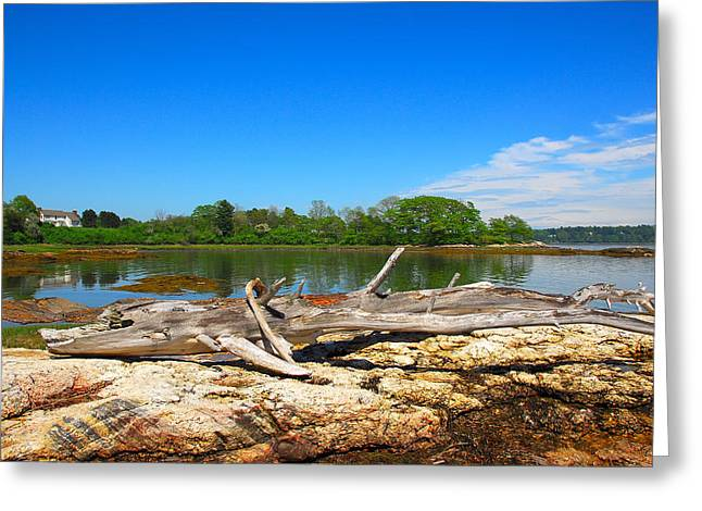 Adrift In Maine Greeting Card