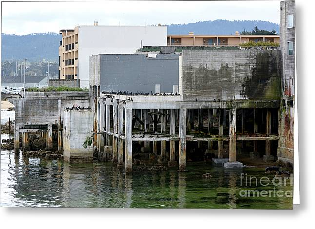 Aeneas Ruins In Springtime At Cannery Row Greeting Card