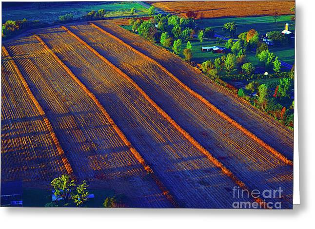 Aerial Farm Field Harvested At Sunset Greeting Card