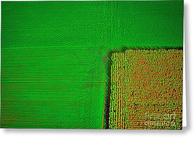 Aerial Farm Mchenry Il  Greeting Card by Tom Jelen