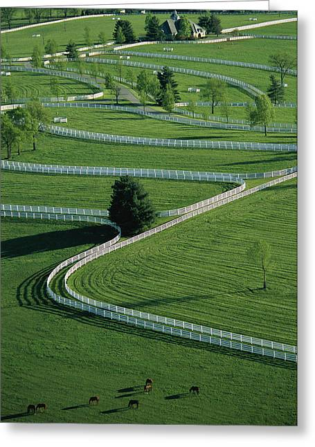 Aerial View Of Donamire Farms Fenced Greeting Card by Melissa Farlow