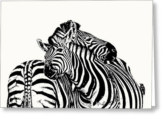 Affectionate Zebra Pair Greeting Card