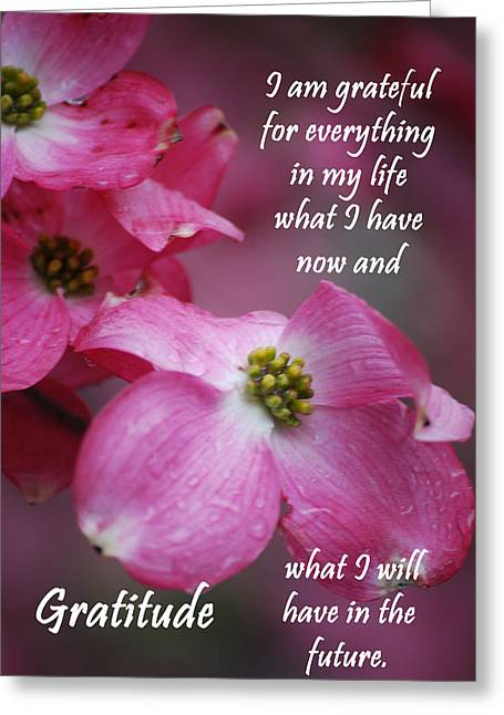 Affirmation Series - Gratitude Greeting Card by Michelle  BarlondSmith