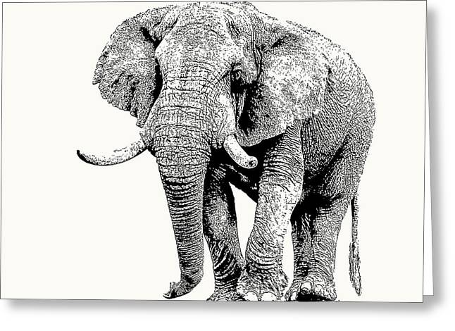 African Bull Elephant With Fine Tusks Greeting Card